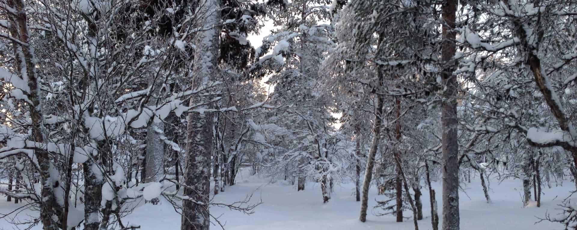 Mein Winteranfang mit Bridgestone Winterreifen 1