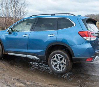 Der Subaru Forester e-Boxer könnte Försters neuer Liebling werden 9