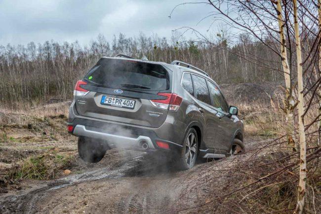 Der Subaru Forester e-Boxer könnte Försters neuer Liebling werden 1