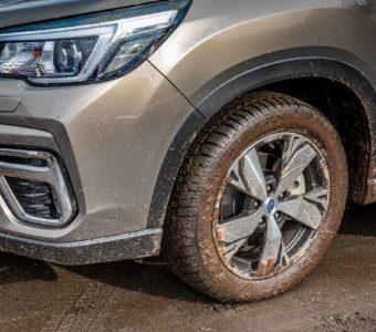Der Subaru Forester e-Boxer könnte Försters neuer Liebling werden 7