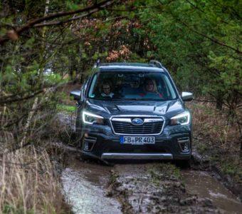 Der Subaru Forester e-Boxer könnte Försters neuer Liebling werden 5