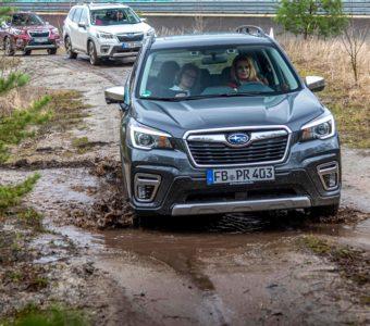 Der Subaru Forester e-Boxer könnte Försters neuer Liebling werden 4
