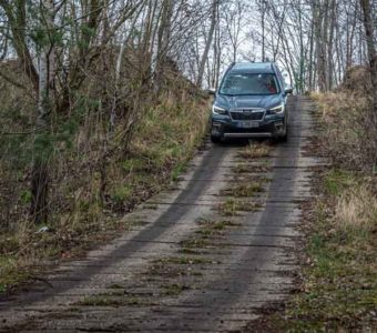 Der Subaru Forester e-Boxer könnte Försters neuer Liebling werden 2